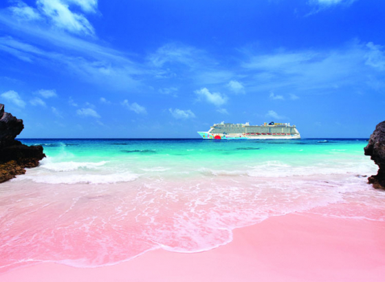 Are you in love with Pink? Then fly down to Bermuda